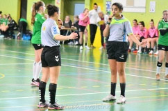 2020-01-25 C54 Intercomite Meurthe et Moselle VS Moselle 11-19 (5)